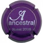 Ancestral X063207 - V16576 - CPC ANC301