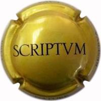 Scriptvm X066881 - V20731
