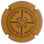 Masia Torreblanca X084039 - V23892