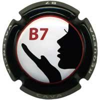 B7 X111591 - VA1017 - CPC BST301