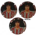Fuchs de Vidal X143885 a X143889 MAGNUM (3 Placas)