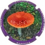 Barnils X176722