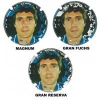 Fuchs de Vidal X198896 a X198898 MAGNUM (3 Placas)