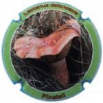 Xic d'Alfons X204508 (Pinatell)